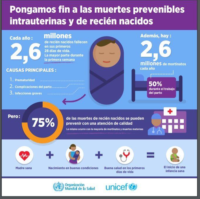 Embarazo de alto riesgo, Embarazo de Alto riesgo. Complicaciones más frecuentes