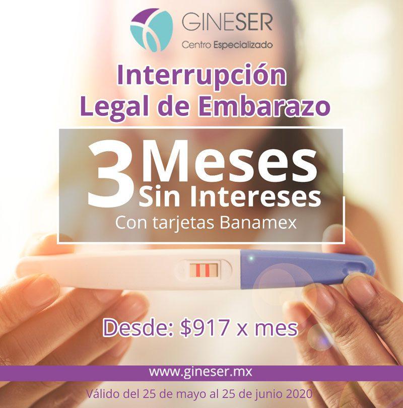 Gineser, GINESER